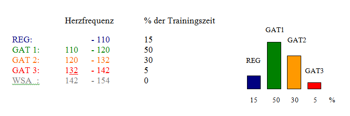 trainingsberatung